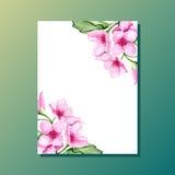 Invitation de cerise de fleur Image stock