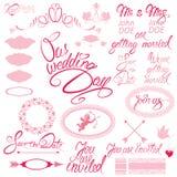 Invitation de mariage réglée avec les éléments floraux Photographie stock libre de droits