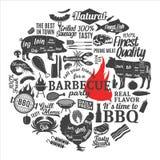 Invitation de partie de barbecue de vecteur Photo libre de droits