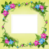 Invitation on the delicate  pastel background Royalty Free Stock Image