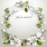 Invitation with delicate white flowers Stock Photography