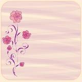 Invitation floral card Stock Photos