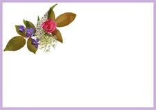 Invitation florale A3 A5 Image libre de droits