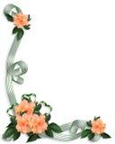 invitation florale de ketmie de cadre Image libre de droits