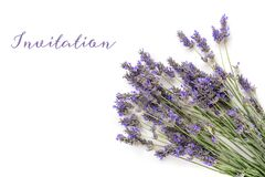 An invitation or greeting card design template with a bouquet of blooming lavender flowers on a white background