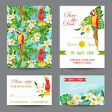 Invitation or Greeting Card Set with Tropical Birds Royalty Free Stock Photo
