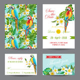 Invitation or Greeting Card Set - Tropical Birds and Flowers Design Stock Photography