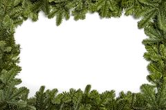 invitation new year Χριστουγέννων κόκκινο δέντρο poinsettia χαιρετισμών λουλουδιών διακοσμήσεων αειθαλές Πλαίσιο με τους κλάδους  στοκ φωτογραφία