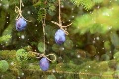 invitation new year Смертная казнь через повешение сливы на рождественской елке Стоковая Фотография RF