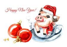invitation new year 与圣诞节盖帽的微型猪在茶杯和红色球作为新年的标志2019年 水彩手拉的illu 皇族释放例证