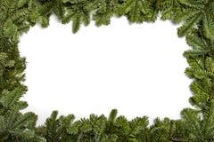 invitation new year julgarneringevergreen blommar treen för hälsningsjulstjärnared Ram med filialer av en julgran, på en vit bakg arkivbild