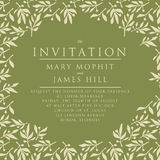Invitation with pattern olive branch Stock Images