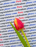 Invitation; please come to the party. royalty free stock photo