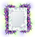 Invitation template with crocus flowers frame Royalty Free Stock Photo