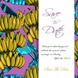 Invitation of tropical pattern with banana leaves. Vector illustration. Stock Photography