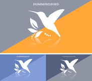 Invitational business card or web banner with humming bird icon Stock Images
