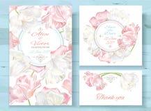 Invitations de tulipe réglées Photographie stock