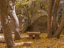 Bench along the trail, Zion National Park. Inviting bench on the Riverside Walk in Zion Royalty Free Stock Image