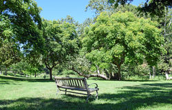 An inviting bench surrounded by trees in a park-like setting. Royalty Free Stock Photo