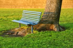Inviting bench under an old tree Royalty Free Stock Photo