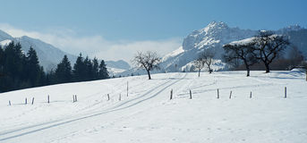 Inviting cross country ski tracks in winters Austria Royalty Free Stock Photos