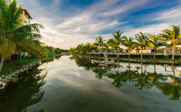 Inviting gorgeous natural landscape view of Memories Caribe hotel grounds Stock Photos