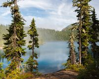 An inviting lake and mountains framed by pine trees. With wispy clouds Stock Photography