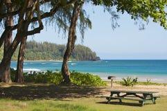 Inviting Tropical Park Near Beach Stock Photography