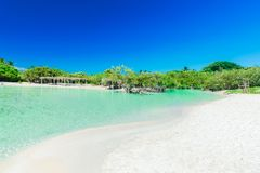 Inviting view of tropical white sand beach and tranquil turquoise ocean lagoon on blue sky background Stock Photography
