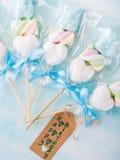 Invito del biglietto di auguri per il compleanno del bambino del neonato su fondo pastello Immagini Stock