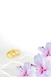 Invito di cerimonia nuziale fotografia stock