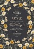 Invito di cerimonia nuziale Bella camomilla dei fiori Cartolina d'auguri dell'annata Pagina Fotografia Stock Libera da Diritti