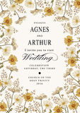 Invito di cerimonia nuziale Bella camomilla dei fiori Cartolina d'auguri dell'annata Pagina Incisione del disegno Illustrazione d Immagine Stock