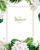 Invito universale, carta di congratulazione con la palma tropicale verde, foglie di monstera e fiori di fioritura della magnolia  royalty illustrazione gratis
