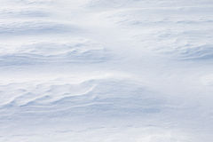 Invoice of snow. White background of a snowdrift. Stock Image