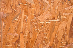 The invoice, wood chips. Pressed in a plate Stock Photography
