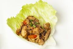 Involucri asiatici casalinghi della lattuga del pollo immagine stock