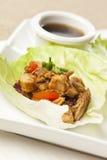 Involucri asiatici casalinghi della lattuga del pollo Immagine Stock Libera da Diritti