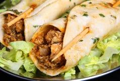 Involucri indiani di kebab di Tikka del pollo Fotografia Stock Libera da Diritti