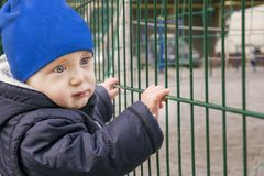 Involved little boy in stylish clothes royalty free stock photography