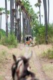 INWA, MYANMAR-MAY 2,2013: Trasporto viaggiatori non identificato Fotografie Stock Libere da Diritti