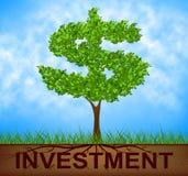 Inwestorski drzewo Wskazuje Amerykańskich dolary I gałąź Obraz Stock