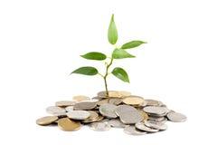 inwestorski pieniądze save obrazy royalty free