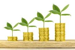 Inwestycja, pieniądze, interes i pieniężny pojęcie, Obraz Stock