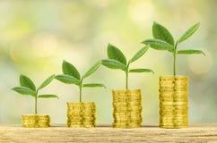 Inwestycja, pieniądze, interes i pieniężny pojęcie, Obrazy Royalty Free
