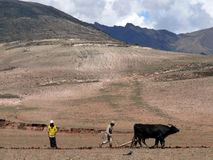 Inwoners van Peru Royalty-vrije Stock Foto