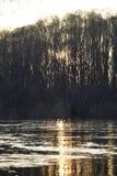 Inya rzeka w wiośnie, lodu dryf teraz fotografia royalty free