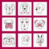 Inzameling met leuke die honden in de stijl van het schetsbeeldverhaal worden geplaatst Stock Afbeelding