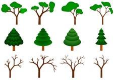 Inzameling van 12 vectorbomen Stock Fotografie