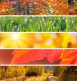 Inzameling van Autumn Headers - de abstracte achtergrond van het dalingsseizoen stock foto's